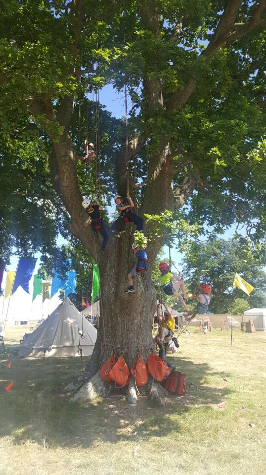 children lost in a tree .jpg